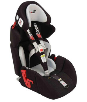 Car Seats and Harnesses